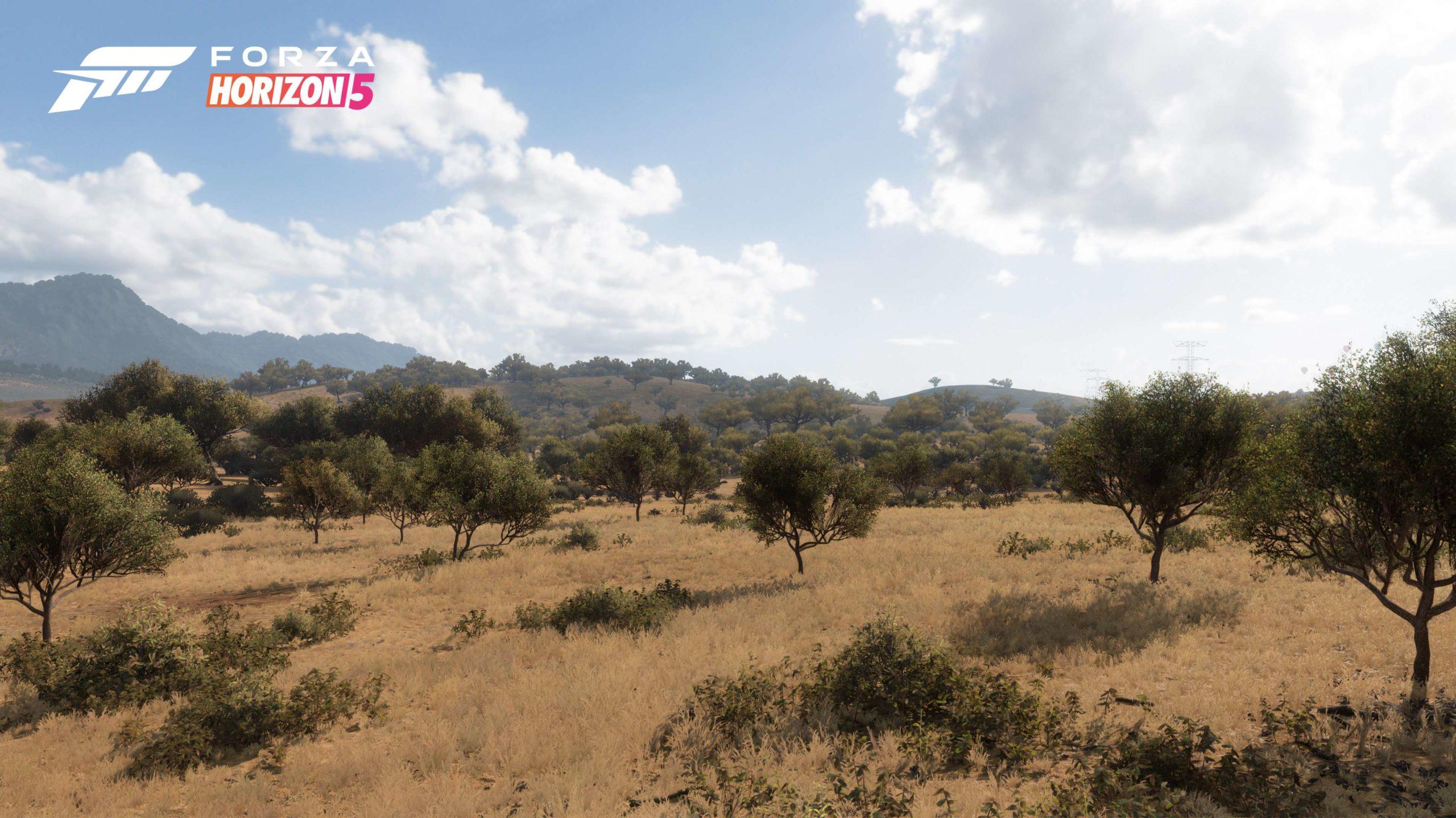 Xbox: biomas en Forza Horizon 5, Flight Simulator en Series, demo Unreal 5 The Coalition y más